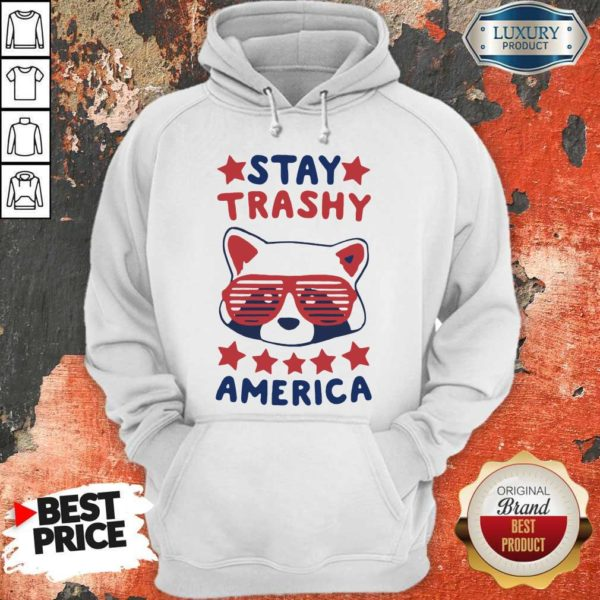 Awesome Racoon Stay Trash America Hoodie