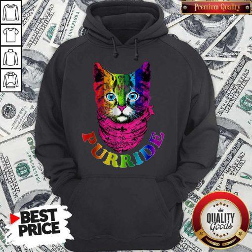 Colorful Pride Cat Gay Pride Hoodie