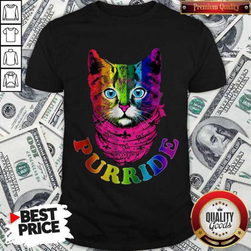 Colorful Pride Cat Gay Pride Shirt