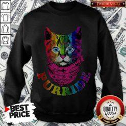 Colorful Pride Cat Gay Pride Sweatshirt
