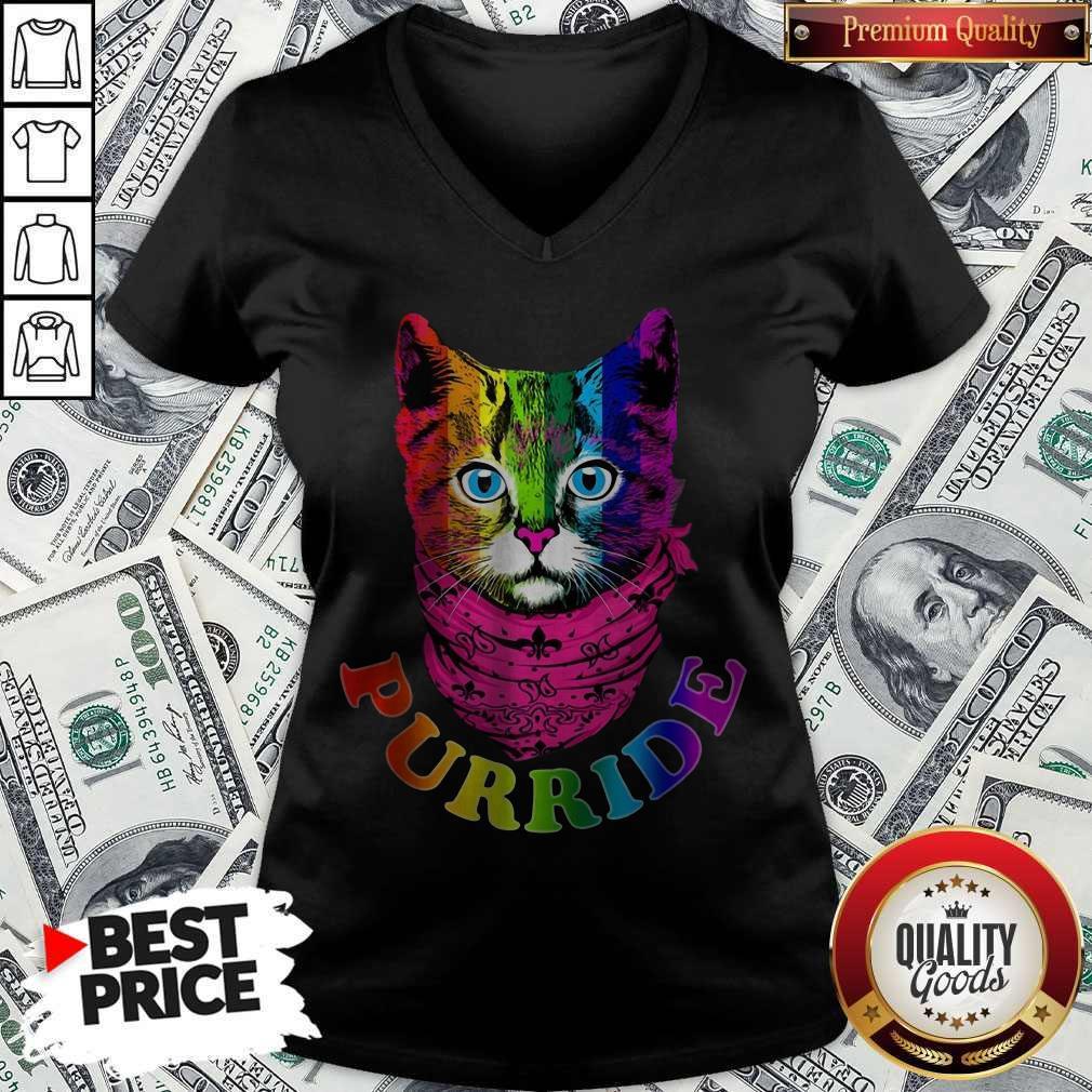 Colorful Pride Cat Gay Pride V-neck