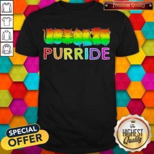 Awesome Purride Cat Lgbt Pride Women's Shirt