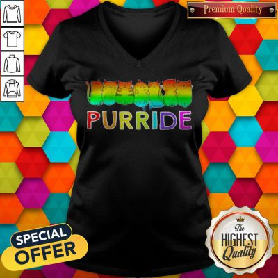 Awesome Purride Cat Lgbt Pride Women's V-neck