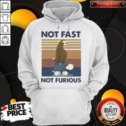 Hot Sloth Turtle Not Fast Not Furious Vintage Hoodie
