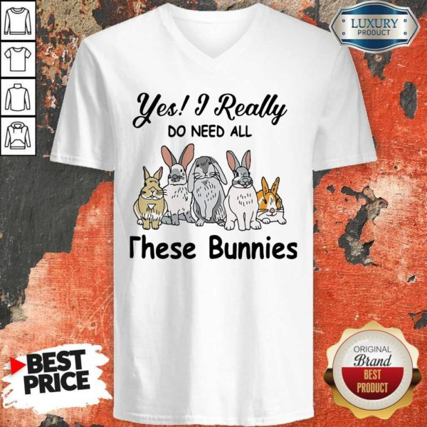 Nice Yes I Really Do Need All These Bunnies Nice Yes I Really Do Need All These Bunnies V-neck