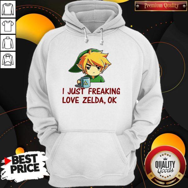 I Just Freaking Love Zelda Ok HoodI Just Freaking Love Zelda Ok Hoodieie