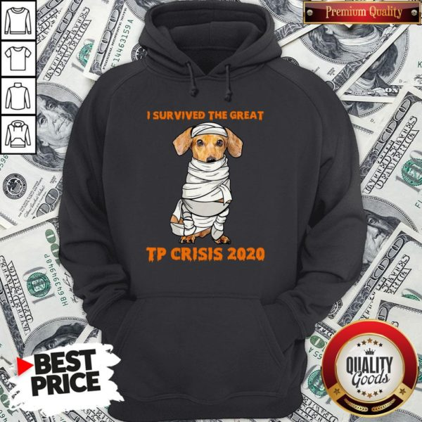 Dachshund Mummies I Survived The Great TP Crisis 2020 Hoodie