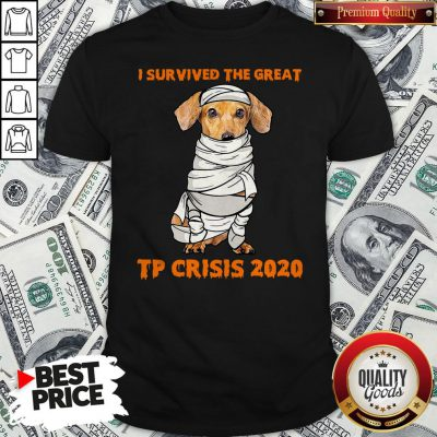 Dachshund Mummies I Survived The Great TP Crisis 2020 Shirt