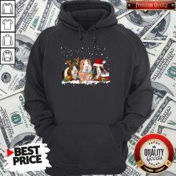 Funny Santa Hamster Reindeer Christmas Hoodie - Design By Waretees.com