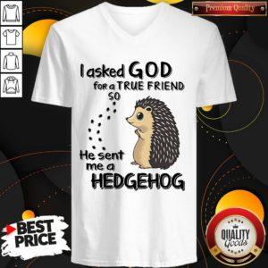 I Asked God For A True Friend So He Sent Me A Hedgehog V-neck