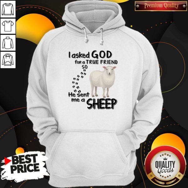I Asked God For A True Friend So He Sent Me A Sheep Hoodie