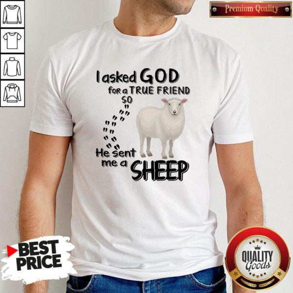 I Asked God For A True Friend So He Sent Me A Sheep Shirt