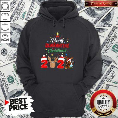 Perfect Merry Quarantine Christmas 2020 Hoodie
