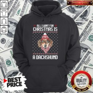 Pretty All I Want For Christmas Is A Dachshund Christmas Hoodie