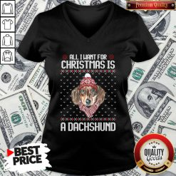 Pretty All I Want For Christmas Is A Dachshund Christmas V-neck