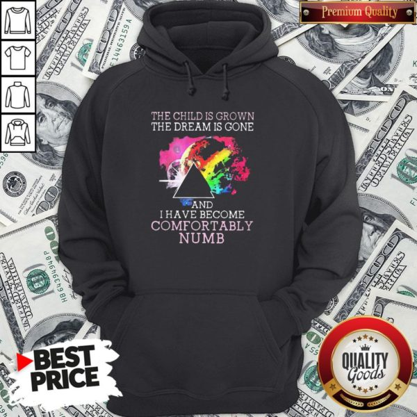 Pretty Pink Floyd The Child Is Grown The Dream Is Gone And I Have Become Comfortably Numb Hoodie