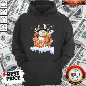 Dachshunds And Snowman Happy Merry Christmas Hoodie - Design By Waretees.com
