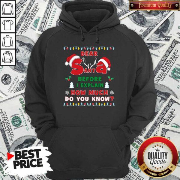 Dear Santa Before I Explain How Much Do You Know Christmas Sweatshirt - Design By Waretees.com