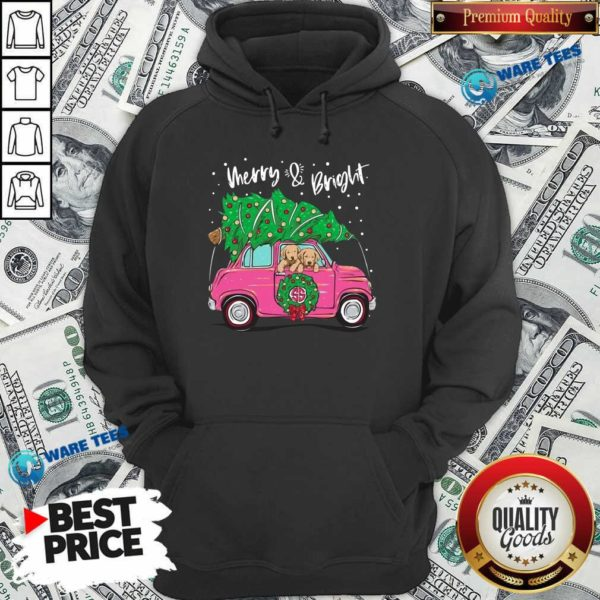 Merry And Bright Pitbull Dog Ugly Christmas Hoodie- Design by Waretees.com