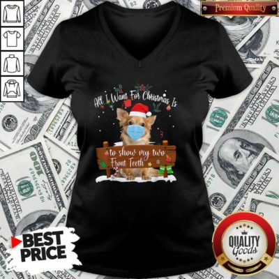 Good Pomeranian Dog Face Mask Call I Want For Christmas Is To Show My Turo Front Teeth Merry Christmas V-neck - Design by Waretees.com