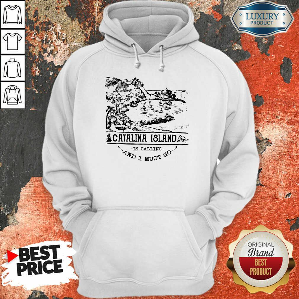 Funny Camping2801 Catalina Island Is Calling And I Must Go Hoodie