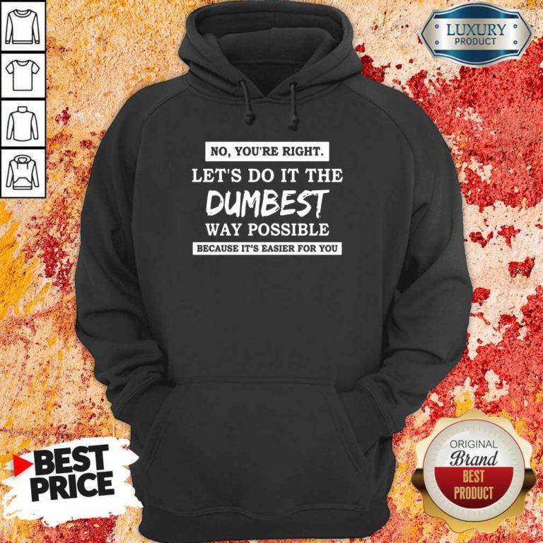 Nice No You'Re Right Let'S Do It The Dumbest Way Possible Hoodie
