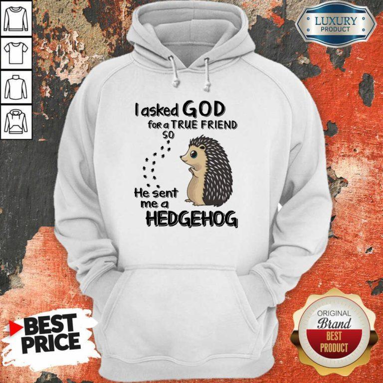 I Asked God A True Friend He Sent A Hedgehog Hoodie