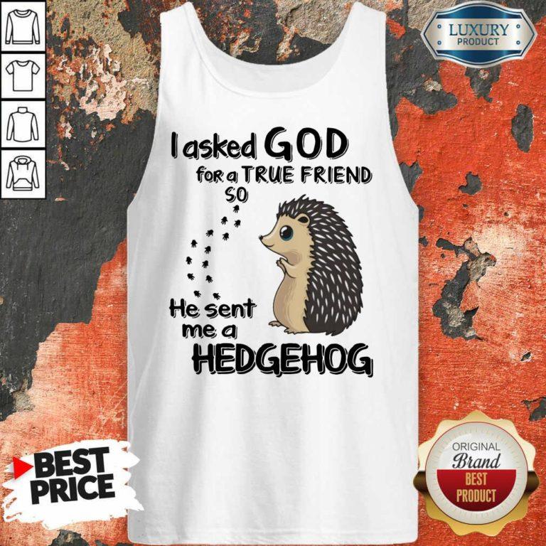 I Asked God A True Friend He Sent A Hedgehog Tank Top