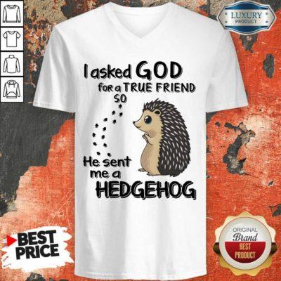I Asked God A True Friend He Sent A Hedgehog V-neck