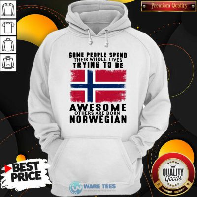 Some People Spend Trying To Be Awesome Norwegian Hoodie