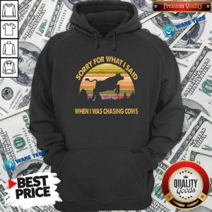 Sorry For What I Said When Was Chasing Cows Vintage Hoodie