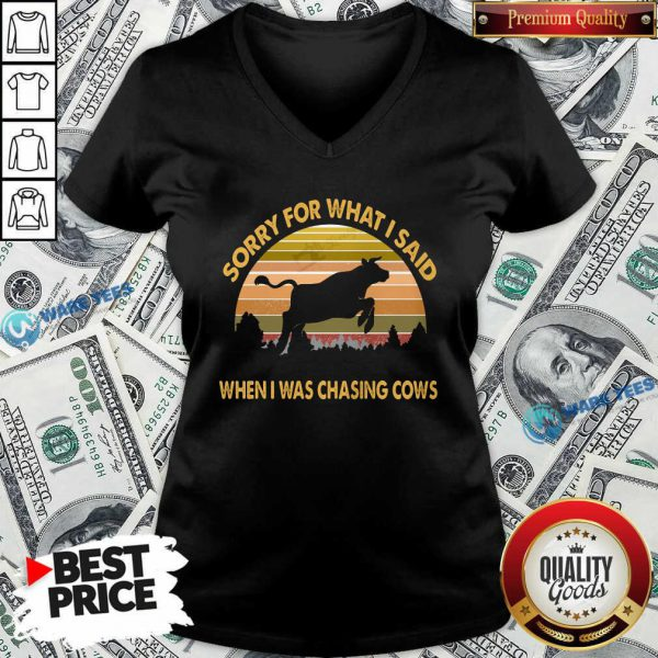 Sorry For What I Said When Was Chasing Cows Vintage V-neck